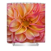 Pure Pastels Shower Curtain