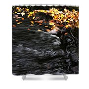 Pure Wild Autumn Denmark Shower Curtain