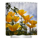 Purely Poppies  Shower Curtain