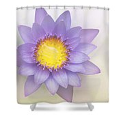 Purity And Grace Shower Curtain