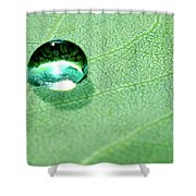 Purity Of Nature Shower Curtain