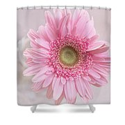 Purity Of The Heart Shower Curtain