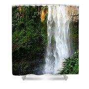 Purlingbrook Falls Shower Curtain
