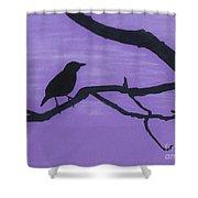 Purple - Bird - Silhouette Shower Curtain