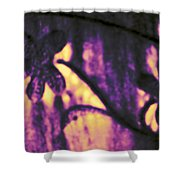 Purple Abstract Shower Curtain