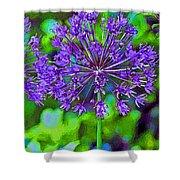 Purple Allium Flower Shower Curtain