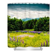 Purple And Mountains And Majesty Shower Curtain