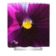 Purple And Pollen Shower Curtain