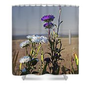 Purple And White Flowers In The Sun Shower Curtain