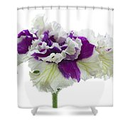 Purple And White Frilly Petunia Shower Curtain