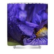 Purple Bliss Shower Curtain