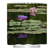 Purple Blossoms Floating Shower Curtain by Patricia Twardzik