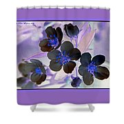 Purple Blue And Gray Shower Curtain