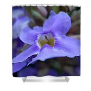 Purple Bokeh Shower Curtain