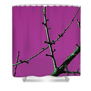 Purple Branches Shower Curtain