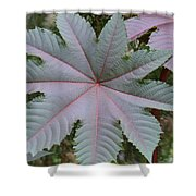 Purple By Nature Shower Curtain