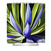 Purple Cactus Shower Curtain