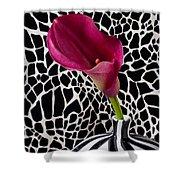 Purple Calla Lily Shower Curtain