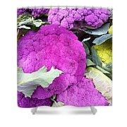 Purple Cauliflower Shower Curtain