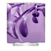 Purple Charm Shower Curtain