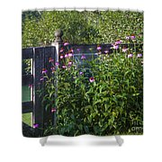 Purple Coneflower Shower Curtain