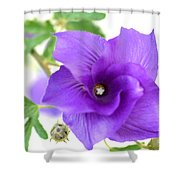 Purple Delicacy Shower Curtain
