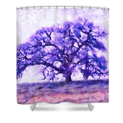 Purple Dreamtime Oak Tree Shower Curtain