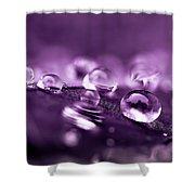 Purple Droplets Shower Curtain