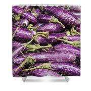 Purple Eggplant Shower Curtain