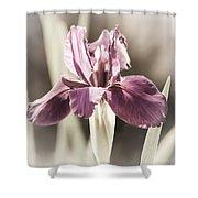 Purple Fairytale Shower Curtain