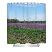 Purple Field Shower Curtain