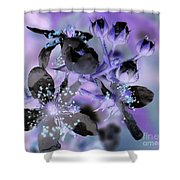 Purple Flower Abstract  2 Shower Curtain