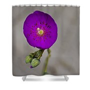 Purple Flower With Buds Shower Curtain