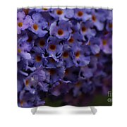 Purple Flowers 2 Shower Curtain