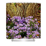 Purple Flowers At Base Of Tree Shower Curtain