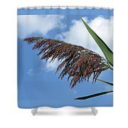 Purple Fringe Shower Curtain