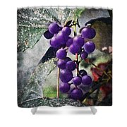 Purple Grapes - Oil Effect Shower Curtain