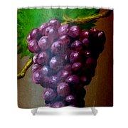 Purple Grapes On Terra Cotta Shower Curtain