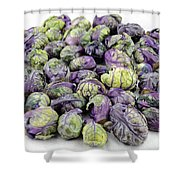 Purple Green Brussels Sprouts Shower Curtain