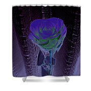 Purple Green Dark Rose Shower Curtain