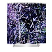 Purple Ground Cover Shower Curtain
