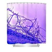 Purple Haze Part 2 Shower Curtain