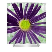Purple Haze - Photopower 2858 Shower Curtain