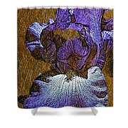 Purple Iris Gold Leaf Shower Curtain