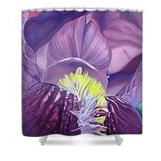 Georgia O'keeffe Style-purple Iris Shower Curtain