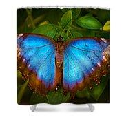 Purple Morpho Butterfly Shower Curtain