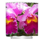 Purple Orchids Shower Curtain