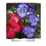Purple Pansy Flowers By Line Gagne Shower Curtain