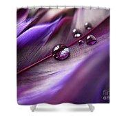 Purple Paradise Shower Curtain