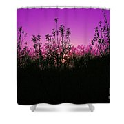 Purple Paradise Sunset By Diana Sainz Shower Curtain